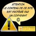 CopyrightSite